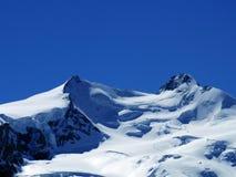 Vista scenica della montagna di punta della neve del alphine di Europa di estate chiara Fotografia Stock Libera da Diritti