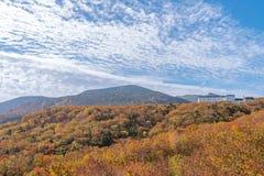 Vista scenica della strada dell'alta montagna alla montagna di Zao Immagine Stock Libera da Diritti