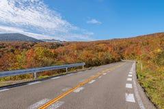 Vista scenica della strada dell'alta montagna alla montagna di Zao Fotografie Stock Libere da Diritti