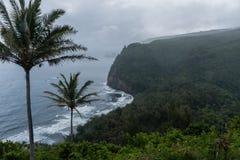 Vista scenica della valle di Pololu un giorno piovoso sulla grande isola delle Hawai Immagini Stock Libere da Diritti