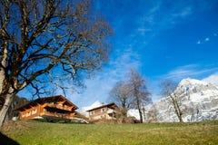 Vista scenica delle alpi svizzere Immagini Stock