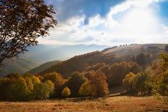 Vista scenica delle colline dell'Alsazia Fotografia Stock Libera da Diritti