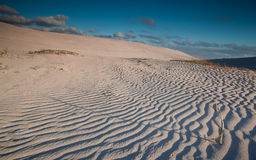 Dune di sabbia increspate Immagini Stock