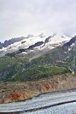 Vista scenica delle montagne svizzere Immagini Stock Libere da Diritti