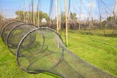 Vista scenica delle reti da pesca Immagine Stock