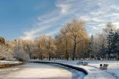 Vista scenica dello stagno congelato Immagine Stock