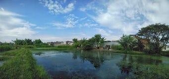 Vista scenica dello stagno di pesce e di chiaro fondo del cielo blu immagini stock