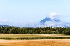 Vista scenica di agricoltura contro la montagna Fotografie Stock