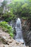 Vista scenica di alta cascata Immagine Stock Libera da Diritti