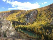 Vista scenica di autunno della montagna River Valley Autumn Landscape Fiume di Chuya Montagne di Altai fotografia stock