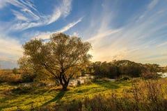 Vista scenica di bello tramonto sopra il fiume all'autunno Fotografie Stock Libere da Diritti