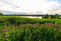 Vista scenica di bello tramonto sopra il lago Fotografia Stock Libera da Diritti