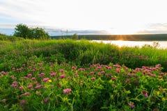 Vista scenica di bello tramonto sopra il lago Immagine Stock Libera da Diritti