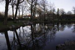 Vista scenica di inverno nel parco di Kadriorg Fotografie Stock