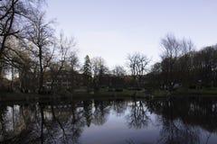 Vista scenica di inverno nel parco di Kadriorg Fotografia Stock Libera da Diritti