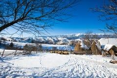 Vista scenica di inverno tipico con i mucchi di fieno e le pecore Fotografia Stock
