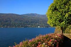 Vista scenica di Isola Madre sul Lago Maggiore, Italia del Nord, Europa Immagine Stock Libera da Diritti