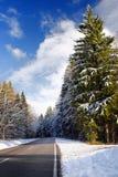 Vista scenica di una strada principale nelle alpi bavaresi con l'abetaia nell'inverno Fotografia Stock