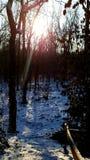 Vista scenica nell'inverno fotografie stock