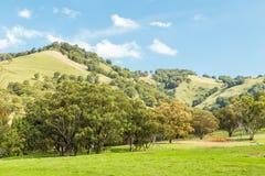 Vista scenica, NSW, Australia Immagini Stock