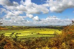 Vista scenica rurale dei campi verdi, Salisbury, Inghilterra Fotografie Stock