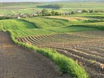 Vista scenica sopra il paesaggio tipico della Polonia Fotografie Stock Libere da Diritti