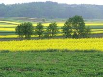 Vista scenica sopra il paesaggio tipico della Polonia fotografia stock libera da diritti