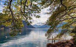 Vista scenica sulle montagne delle alpi e sul lago geneva, Svizzera immagine stock libera da diritti