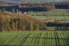 Vista scenica - vallate di Yorkshire - l'Inghilterra Fotografia Stock