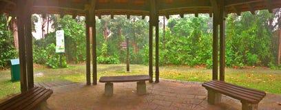 Vista serena del parco Fotografia Stock Libera da Diritti