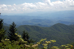 Vista of Smoky Mountains straddles. In Great Smoky Mountains National Park, Tennessee Royalty Free Stock Photo