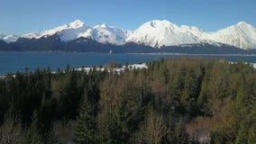 Vista sobre as partes superiores da árvore em Alaska filme
