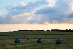 Vista sobre campos com os pacotes da grama após a colheita Foto de Stock Royalty Free