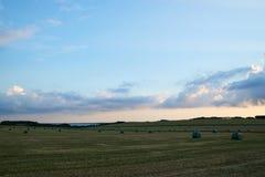 Vista sobre campos com os pacotes da grama após a colheita Imagem de Stock