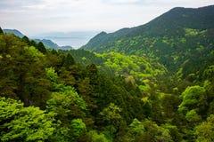 Vista sobre a floresta verde com coloração diferente em montanhas Jiangxi China do parque nacional de Lushan foto de stock royalty free