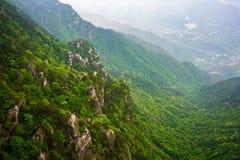 Vista sobre a floresta verde com coloração diferente em montanhas Jiangxi China do parque nacional de Lushan fotos de stock royalty free