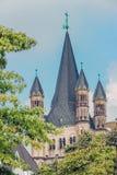 Vista sobre a igreja St Martin com as árvores em bordas na água de Colônia fotografia de stock royalty free