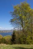 Vista sobre o lago Silkeborg em Dinamarca fotos de stock