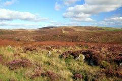 Vista sobre o moorland ao Tor de Hamel, Dartmoor imagem de stock