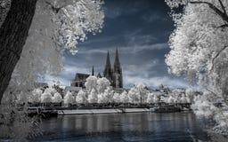 Vista sobre Regensburg no infravermelho fotos de stock