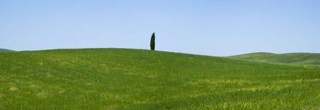 Vista sobre Toscânia rural, Itália Fotografia de Stock Royalty Free