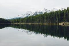 Vista sopra Herbert Lake Fotografie Stock