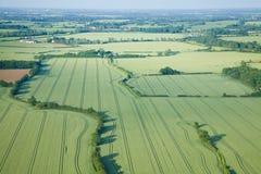 Vista sopra i campi di verde di inizio dell'estate Fotografia Stock Libera da Diritti