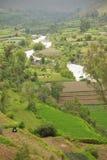 Vista sopra i giardini di inca ed il fiume del peperoncino rosso, Arequipa fotografia stock libera da diritti