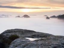Vista sopra il bordo tagliente dell'arenaria nella valle lunga in pieno di prima foschia autunnale la valle nebbiosa della forest Immagine Stock
