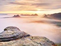 Vista sopra il bordo tagliente dell'arenaria nella valle lunga in pieno di prima foschia autunnale la valle nebbiosa della forest Immagini Stock