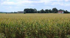 Vista sopra il campo all'azienda agricola storica Eichenhof (acceso azienda agricola della quercia) a Jager, Meclemburgo-Pomerani Immagine Stock Libera da Diritti