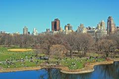Vista sopra il Central Park Immagine Stock Libera da Diritti