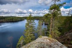 Vista sopra il lago da una roccia, con i pini nella priorità alta e nel cielo nuvoloso sopra l'orizzonte Fotografia Stock