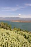 Vista sopra il lago EL-Ouidane del recipiente della diga, alto atlante Fotografia Stock Libera da Diritti